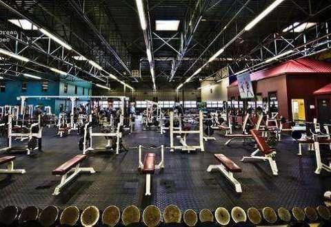Vedovati Pisos Pro-Gym-Serge-Moreau-entre-as-maiores-academias-do-mundo-480x330