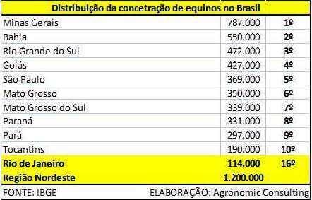 Concentração de Equinos no Brasil