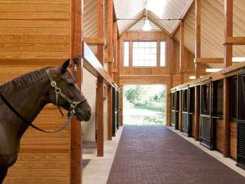 Pisos emborrachados para cavalos