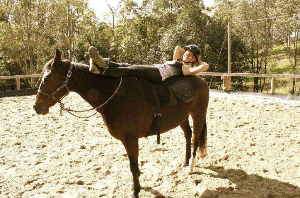 Como reduzir o stress mental entre cavalo e cavaleiro