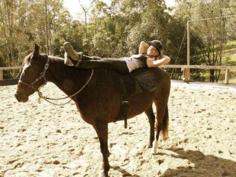 Vedovati Pisos cavalo-stress-relaxamento-1024x682-2-480x360