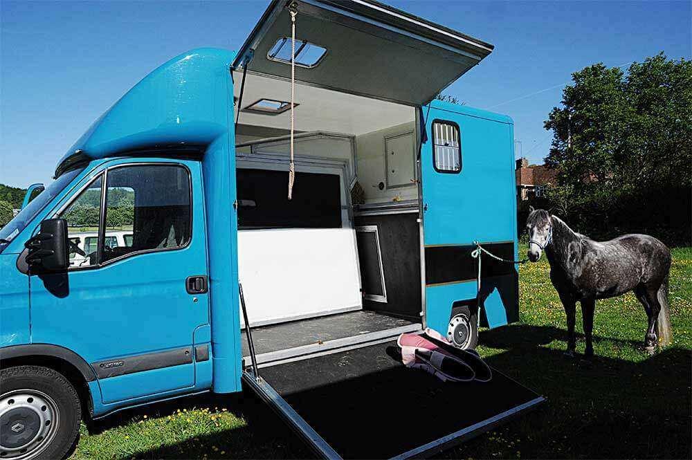 lei transporte animais 1 - Tapete de borracha para transporte de cavalos HD-12 BOL