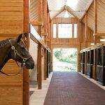 Como fazer a manutenção correta da baia do seu cavalo