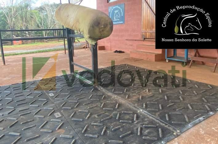 imagem ara salete - Piso de borracha para Sala e Monta de Inseminação HD Equibov