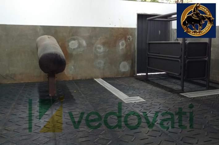 imagem haras sacramento - Piso de borracha para Sala e Monta de Inseminação HD Equibov
