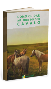Ebook Cavalos