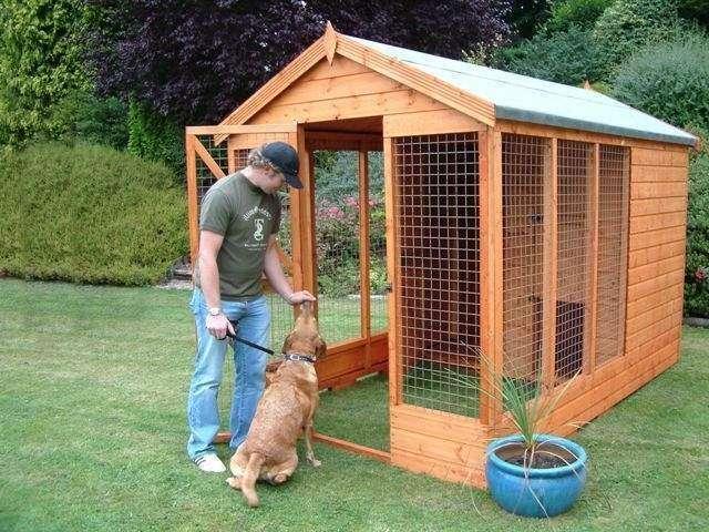 canil domestico 4 - Veja o que é necessário para construir um canil doméstico