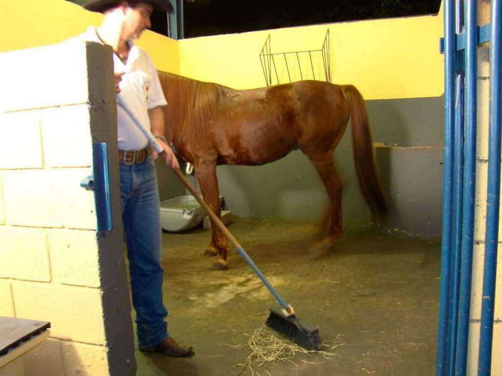 baia de cavalo 1024x768 - Tapete de borracha para transporte de cavalos HD-12 BOL