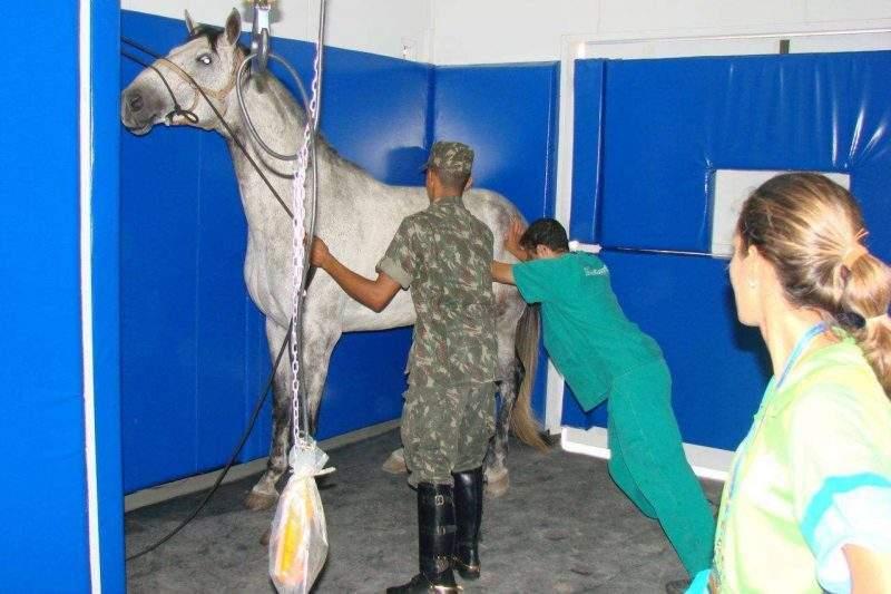 Sala Anestesia Pan Piso e Colchões Protetores 1280x853 1 800x533 - Piso de borracha para Sala de Indução Anestésica / Sala de Recuperação EBV-43